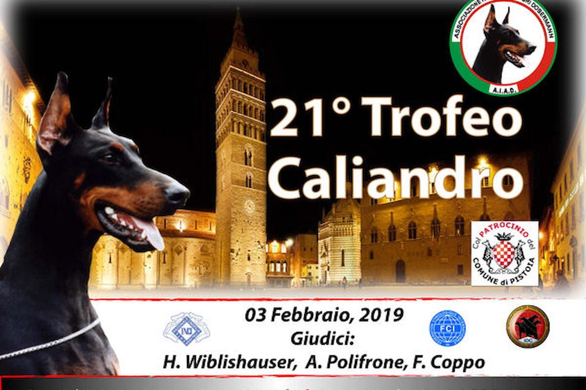Aiad Dobermann organizza un evento straordinario, a Pistoia il 21° trofeo Caliandro