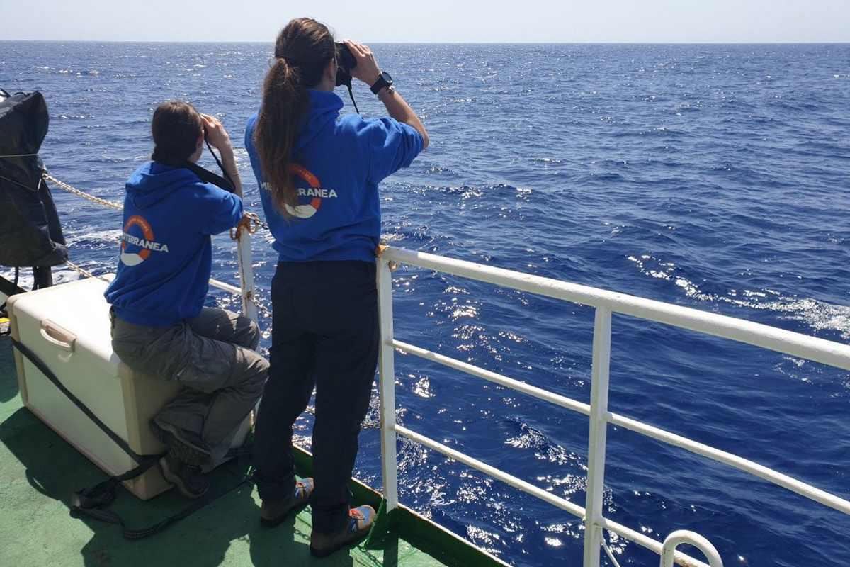 La nuova direttiva di Salvini contro le Ong dopo che la Mare Ionio ha ripreso a navigare nel Mediterraneo