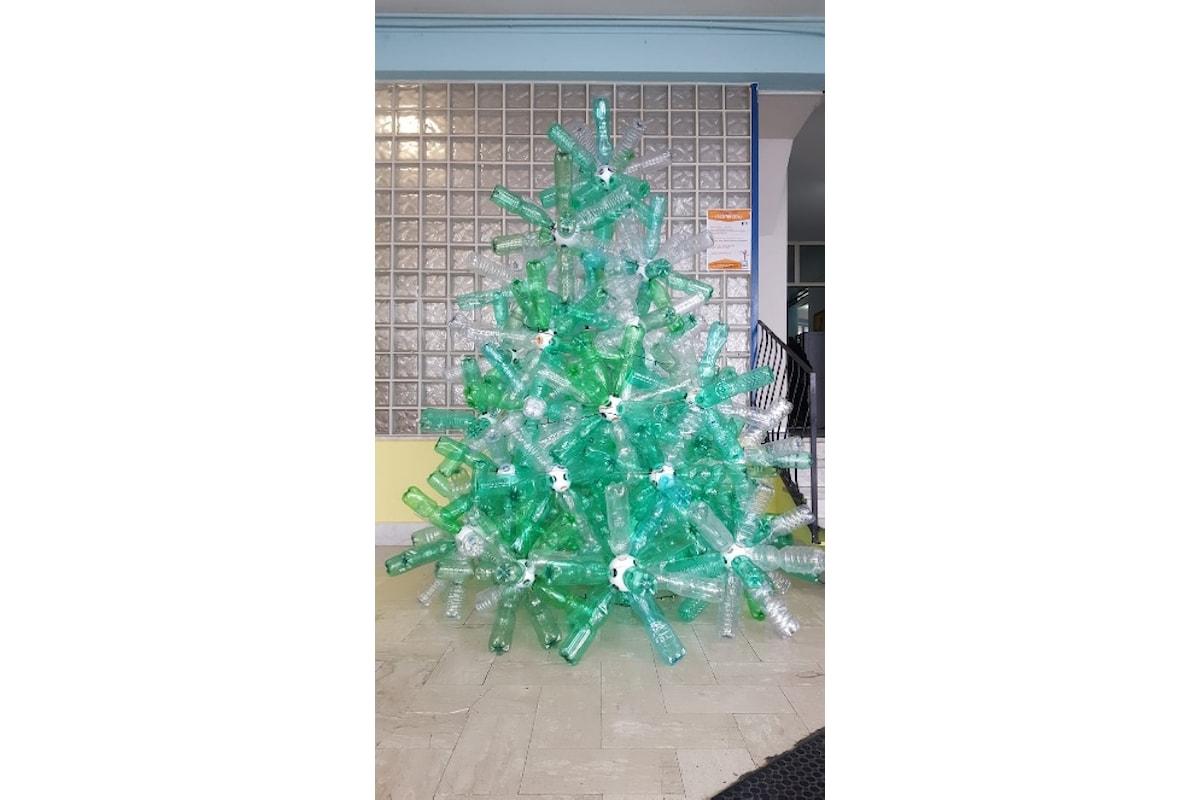 A Natale è spuntato il RICICLALBERO