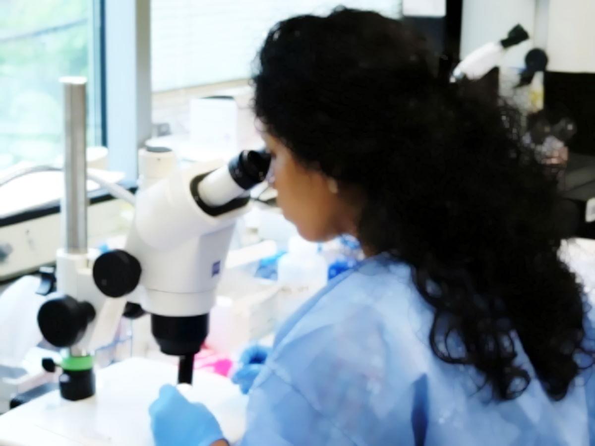 Niaid: il coronavirus Sars-CoV-2 resta nell'aria per ore, sui materiali per giorni