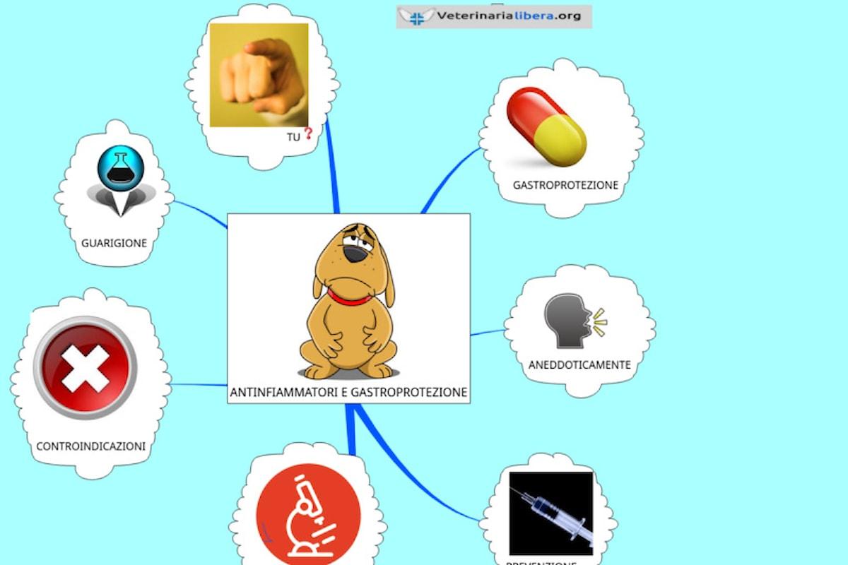 Gastroprotezione e utilità durante terapia antinfiammatoria, ma forse...
