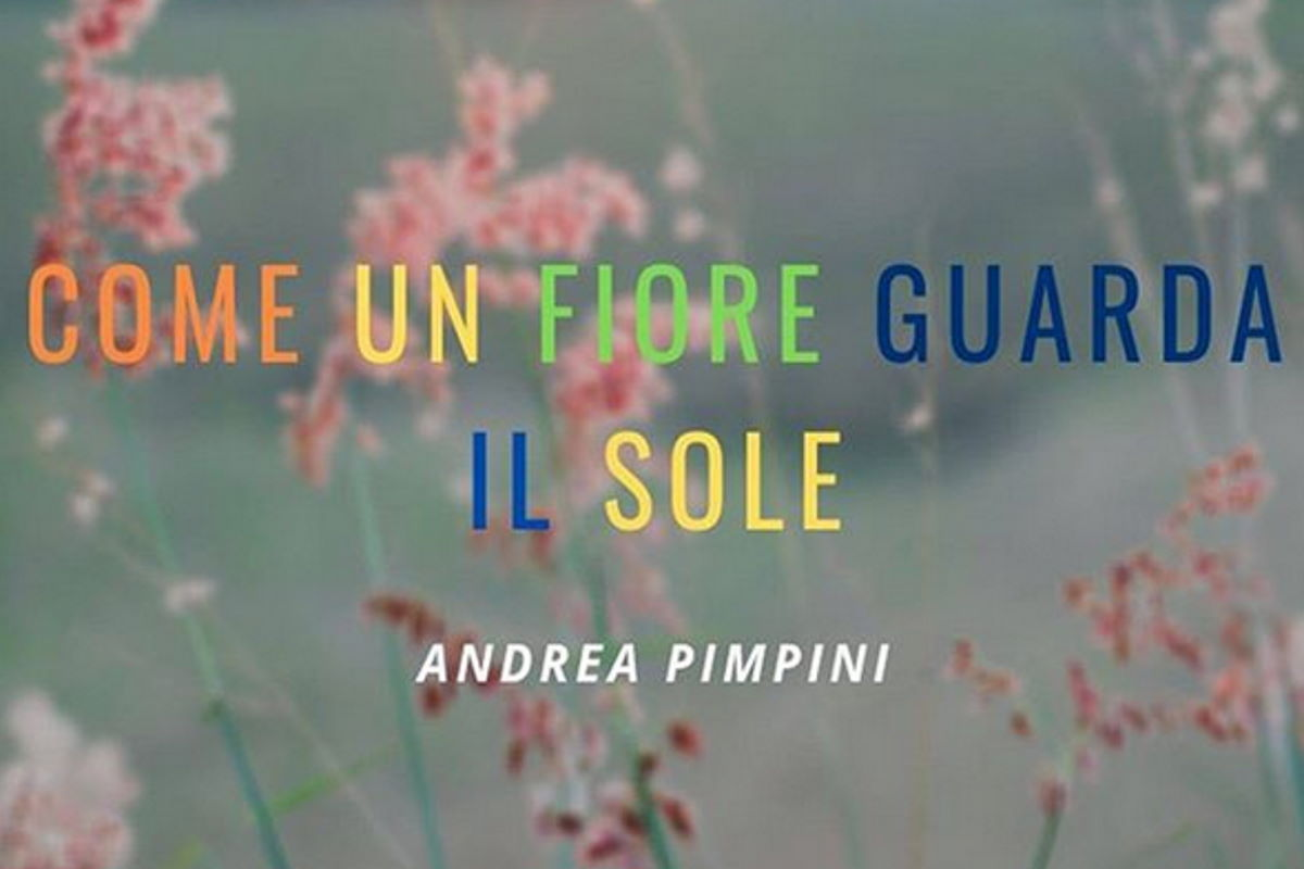 Come un fiore guarda il sole - Il nuovo singolo di Andrea Pimpini
