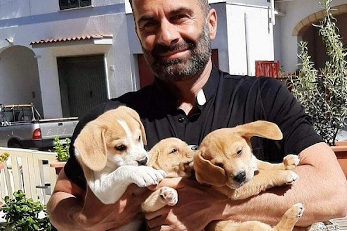 Non abbandonate gli animali: appello di don Cosimo Schena, il prete influencer, su Tik Tok