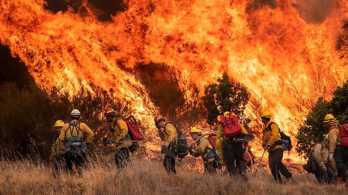 La California (di nuovo) in fiamme chiede aiuto anche a Canada e Australia