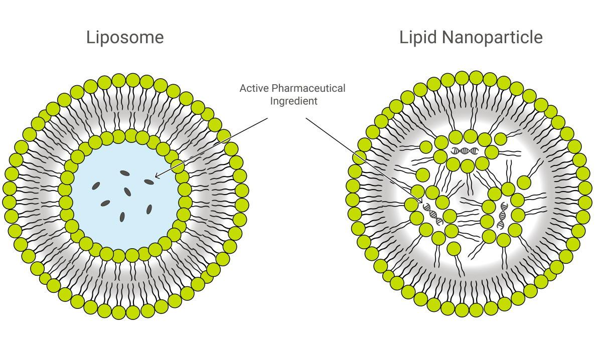 Cosa sono i vaccini con messanger RNA?