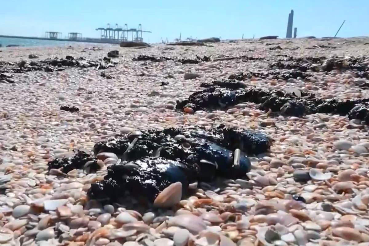 L'inquinamento marino più grave degli ultimi decenni in Israele