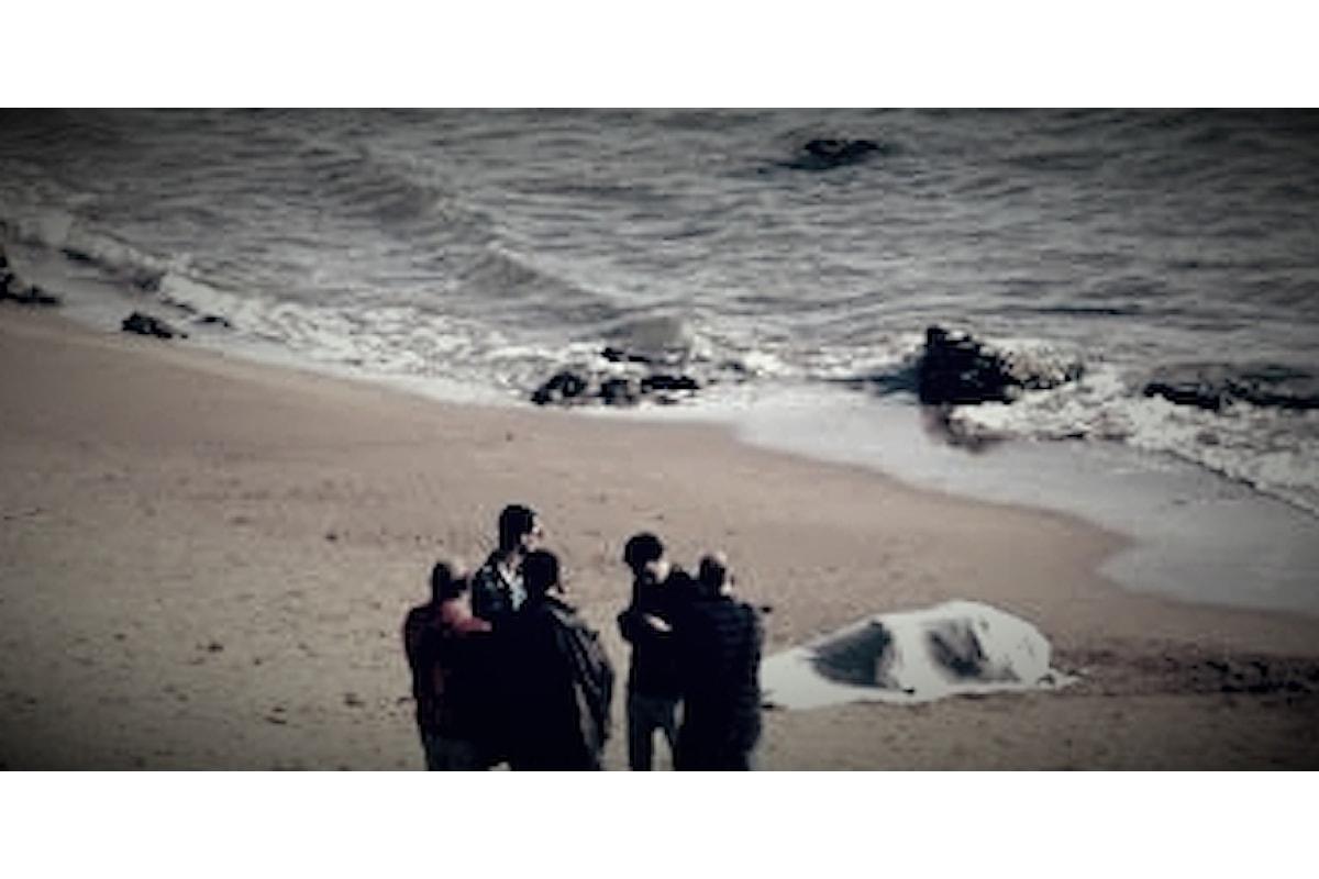 Capaccio: donna morta ritrovata in spiaggia, indagano i carabinieri.