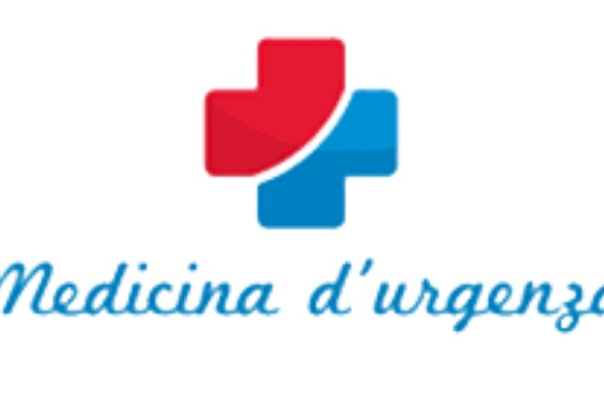Il professionismo infermieristico nella Medicina d'Urgenza