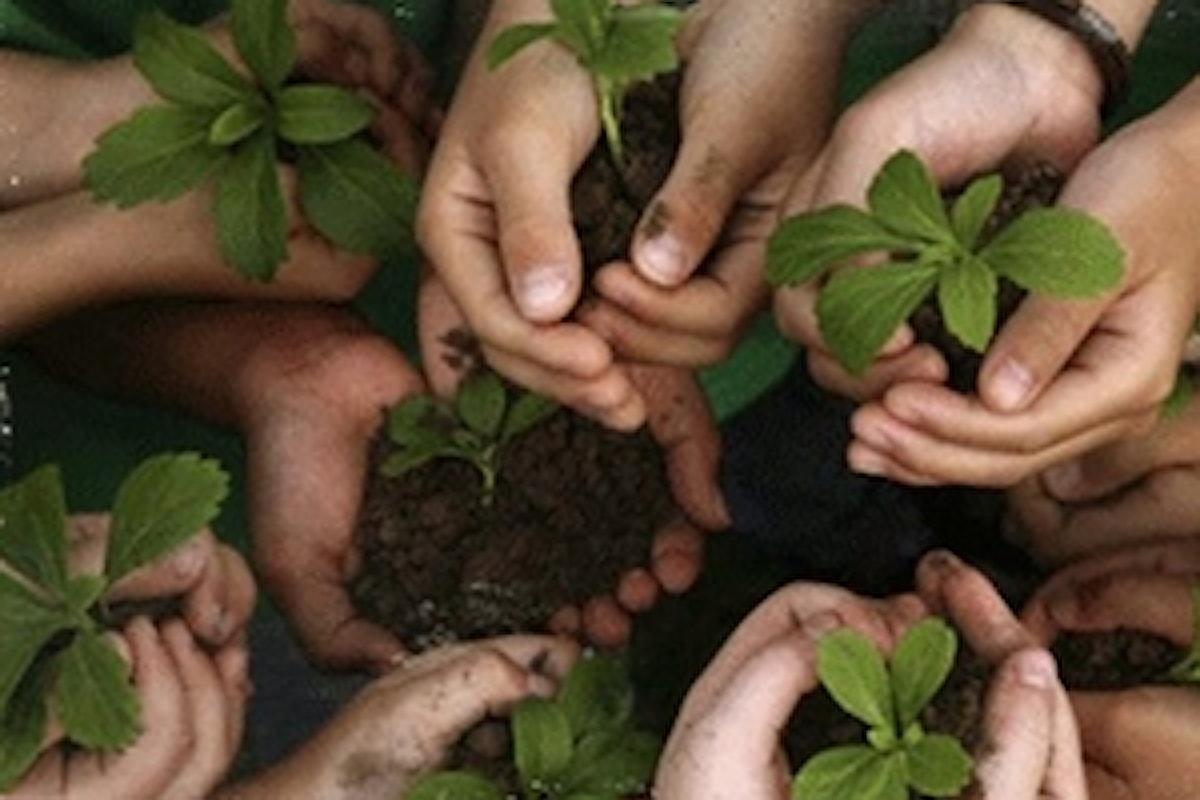 Al via le comunità Laudato si' per l'ambiente e la giustizia sociale