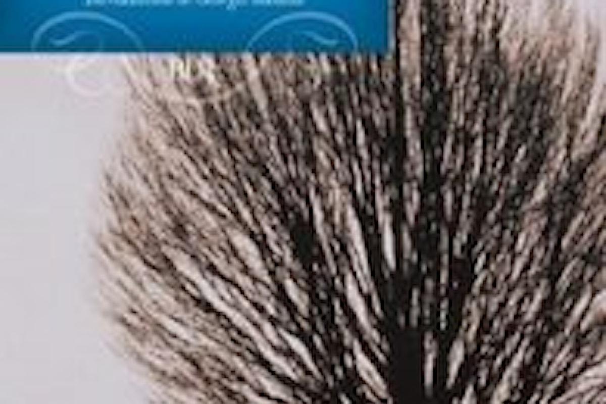 Cime Tempestose Recensione libro