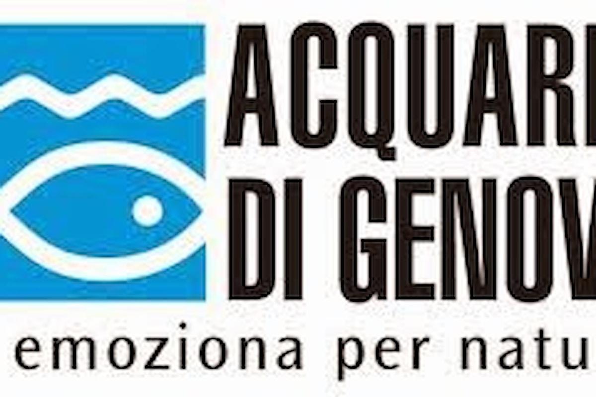 Acquario di Genova 2016: Promozioni, Sconti e Convenzioni