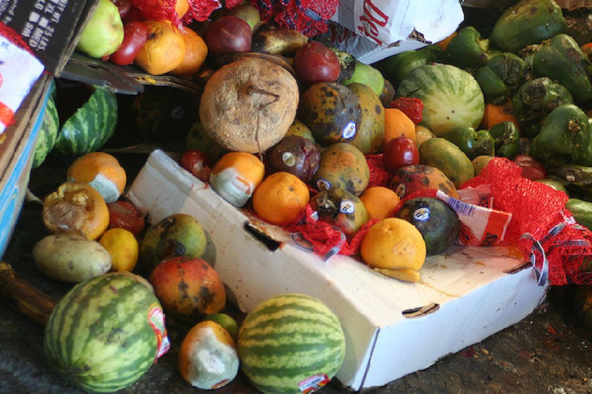 Spechi alimentari: una buona proposta dalla Regione Puglia