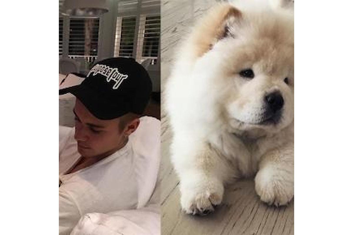 Justing Bieber: abbandona il suo cane rischiando di condannarlo a morte