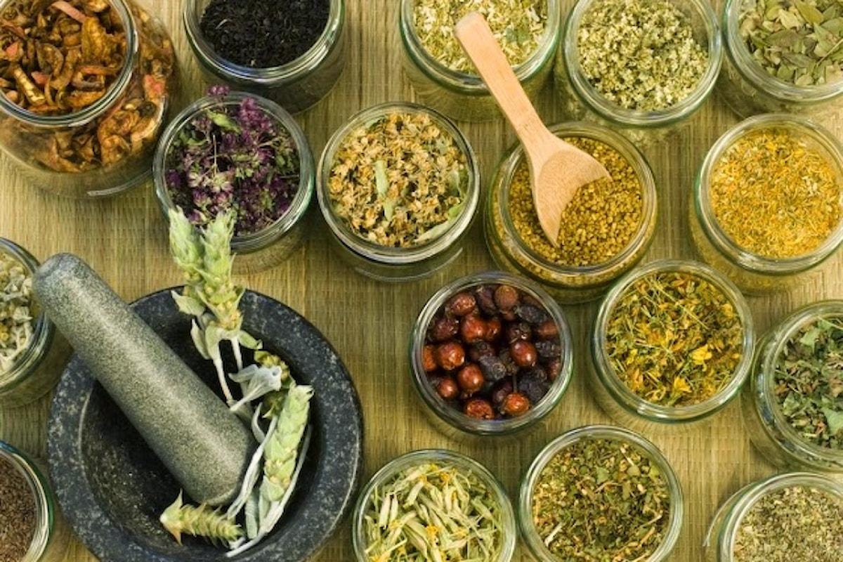 I rimedi naturali contengono sostanze tossiche